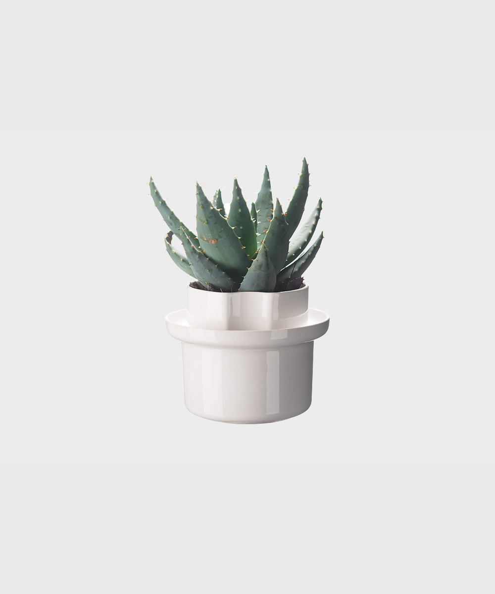 Riippu-ruukku kasveille.